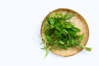 Cách trị mụn đầu đen trên trán bằng rau răm tại nhà